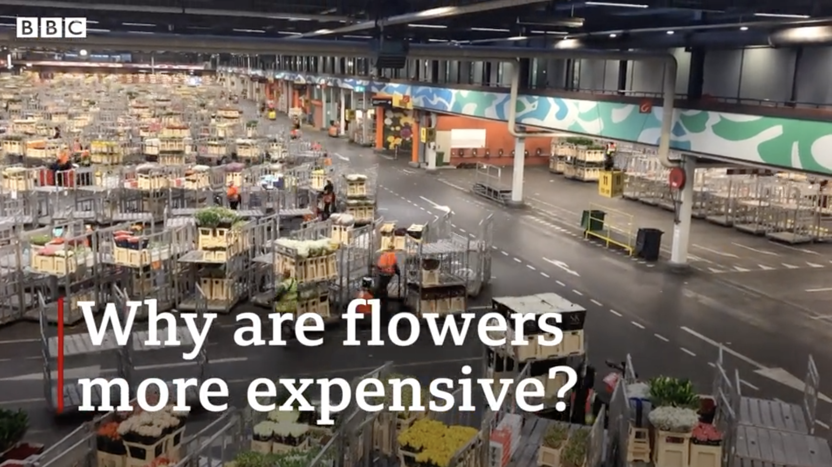 Why are flowers getting more expensive?